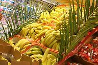 Les bananes constituent une nourriture de base pour des millions de personnes sous les tropiques. ©DUCLOS ALEXIS