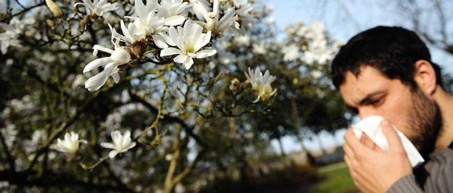 """15 à 20 % de la population du Nord-Pas de Calais, où va être installé le """"jardin de pollens"""", est sujette au """"rhume des foins""""."""
