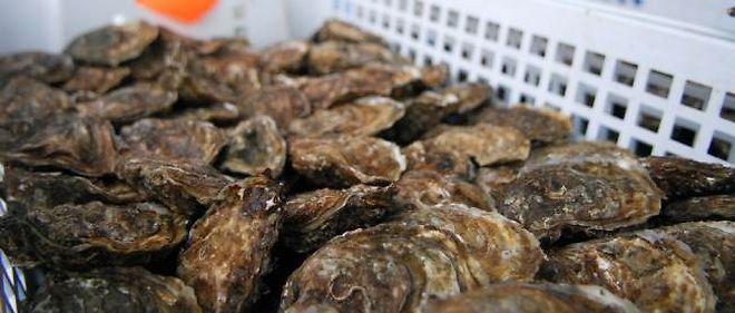 Les huîtres issues de zone B doivent passer 72 heures dans un bassin de purification.