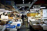 Le marché aux poissons de Tsukiji à Tokyo ©Nicolas Datiche