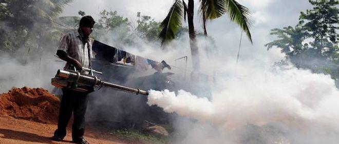 Lutte contre la dengue au Sri Lanka.