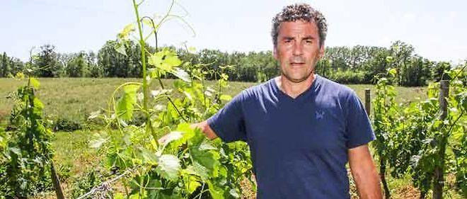 Philippe Cabrel
