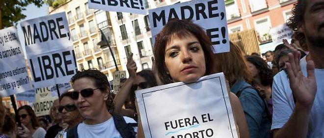 La manifestation contre le projet du gouvernement Rajoy a réuni des centaines d'Espagnols à Madrid dimanche 29 juillet.