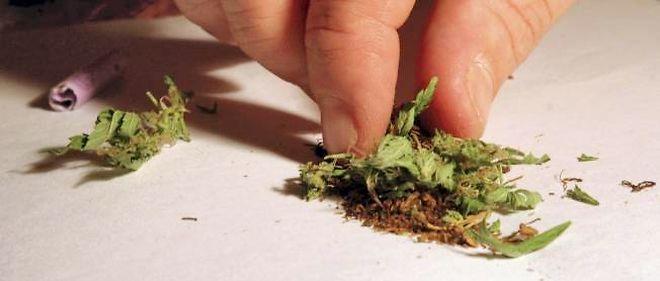 """Pour la première fois, le cannabis """"récréatif"""" est légal dans deux États américains."""
