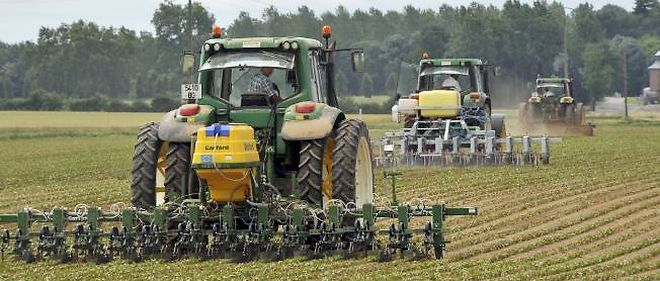 À cause de la sécheresse dans la corn belt américaine et en Russie, les céréaliers français sortent grands vainqueurs de l'année 2012.