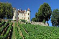 Vignoble du Sud-Ouest ©Jimjag - Fotolia
