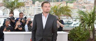 Leonardo Di Caprio à Cannes, mercredi. ©Alberto Pizzoli