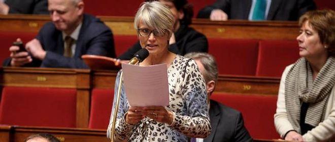 Véronique Massonneau à l'Assemblée nationale.