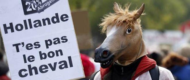 Des centaines de poneys et des milliers de cavaliers ont défilé dimanche à Paris contre une hausse de la TVA sur les activités des centres équestres.