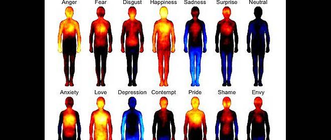 Émotions : quand le corps parle - Le Point