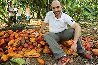 Benjamin Figarède sous les cacaoyers de la plantation Paineiras, en pleine récolte estivale. ©Laurent Vu