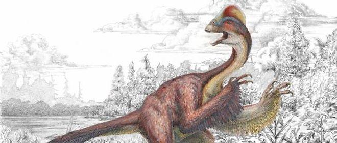 Reconstitution du dinosaure Anzu wyliei, surnommé le poulet de l'enfer.