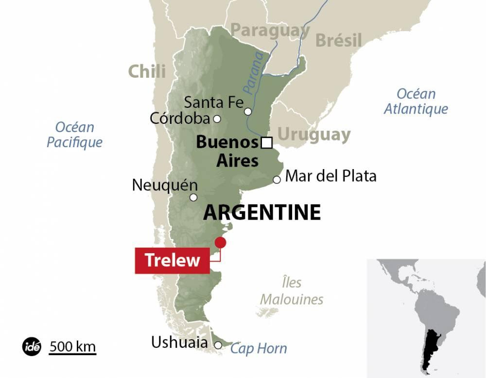 Les paléontologues argentins sont persuadés du caractère exceptionnel de leur découverte. ©  IDE