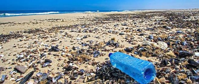 Les déchets de plastique flottant sur les océans pèseraient seulement 7 000 à 35 000 tonnes. Mais ils ne représentent qu'une fraction de l'ensemble des micro-particules infiltrées dans la vie marine et les eaux du globe.