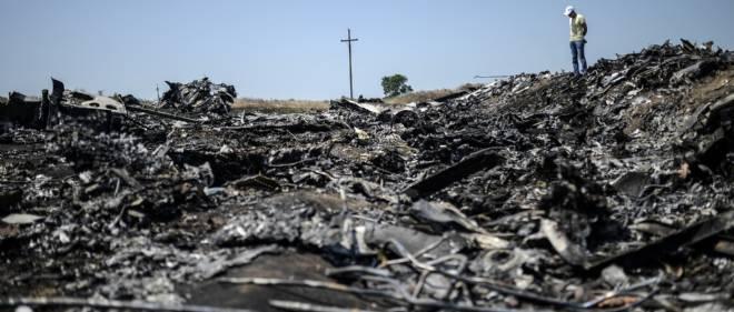 Un homme contemple les restes de l'avion de Malaysia Airlines qui s'est écrasé le 25 juillet 2014 dans la région de Donetsk, en Ukraine.