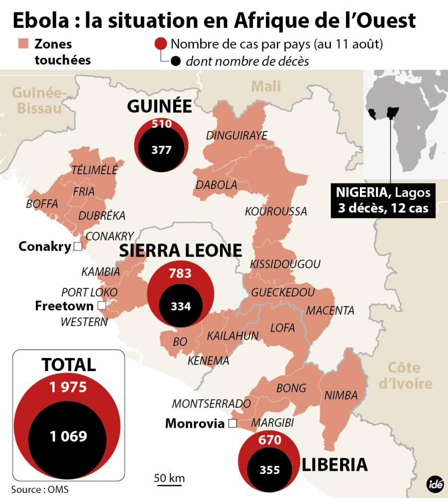 Bilan de l'épidémie au 11 août