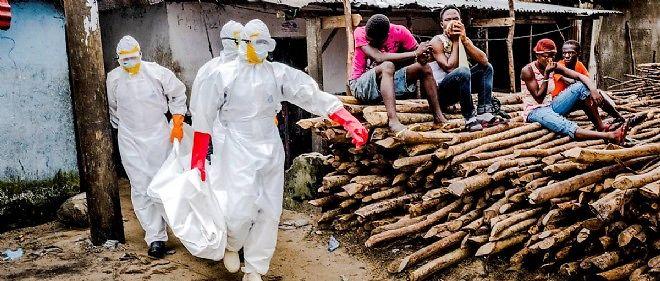 Ebola a fait plus de 4 000 morts depuis le début de l'année sur quelque 7 400 cas recensés dans sept pays, essentiellement au Liberia, en Sierra Leone et en Guinée.