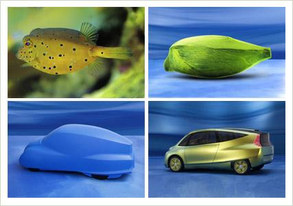 """La """"bionic car"""" de Mercedes, inspiré par le poisson-coffre ©  DR"""