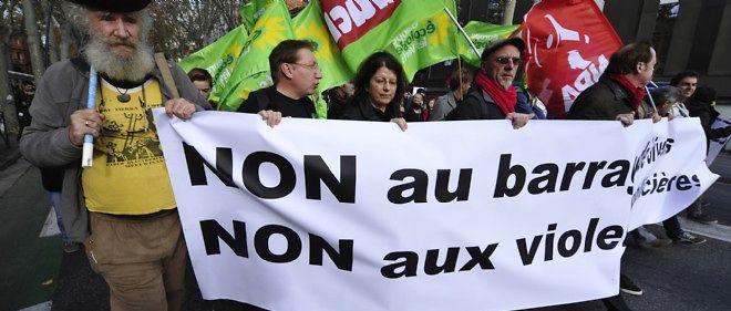 Une manifestation contre le barrage de Sivens, le 22 novembre 2014 à Toulouse.