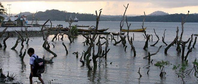 Le village de Port Bair, dans l'archipel d'Andaman et Nicobar, dans le sud de l'Inde, au lendemain du tsunami de 2004.
