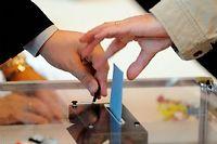 Le FN, arrivé en tête dimanche dernier, n'aura finalement pas d'élus dans les deux cantons du fief électoral historique de Jean Jaurès (Photo d'illustration). ©Witt/Villard