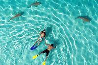 L'une des photos primées par le concours Dronestagram & National Geographic 2015.