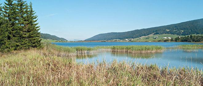 Le lac des Rousses, seul lac de Franche-Comté dans le bassin versant du Rhin, est situé sur la commune des Rousses, dans le département du Jura, non-loin de la frontière franco-suisse.