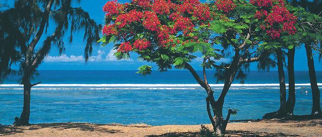 La Réunion (photo de la plage de Saint-Leu) connaît un taux de chômage de presque 30 % !
