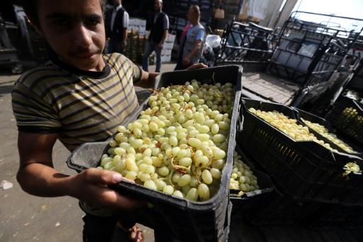 Un jeune Syrien décharge des caisses de raisin au marché des Halles de Damas, le 21 septembre 2015 © JOSEPH EID AFP