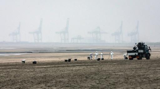 Des gens s'efforcent de ramasser les boulettes de carburant échouées sur la plage belge de Blankenberge après la collision entre deux navires, le 21 octobre 2015 © KURT DESPLENTER BELGA/AFP
