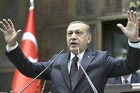 Le président turcRecep Tayyip Erdogan a remporté la majorité absolue au Parlement aux législatives du 2 novembre, avec l'AKP, son parti islamo-conservateur. ©ADEM ALTAN