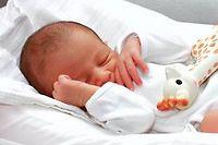 Bébé de dix jours  avec son jouet. ©ANGOT/SIPA