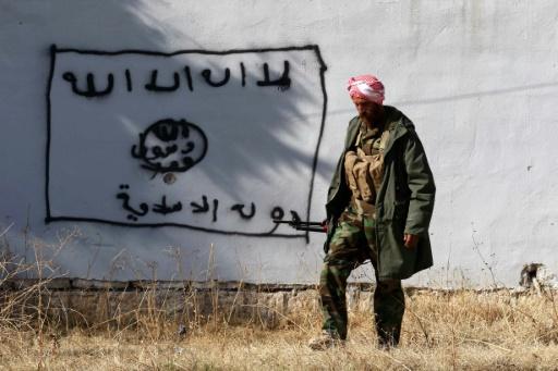 Un combattant kurde irakien dans la ville de Ninjar reprise au groupe EI, en Irak, le 13 novembre 2015 © SAFIN HAMED AFP/Archives