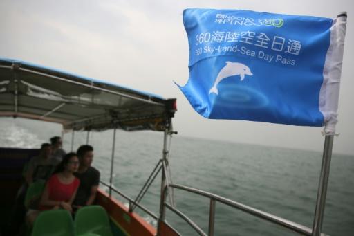 Des touristes font un tour en bateau pour essayer d'apercevoir les dauphins roses à Tai O, à Hong Kong, le 4 novembre 2015 © Isaac Lawrence AFP