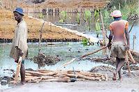 Encadrés par des architectes envoyés par l'ICPM, des villageois malgaches construisent eux-mêmes un barrage pour protéger leurs rizières des inondations de plus en plus fréquentes.