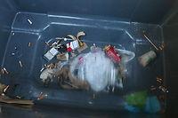 Fond de poubelle COP21 ©Lewino