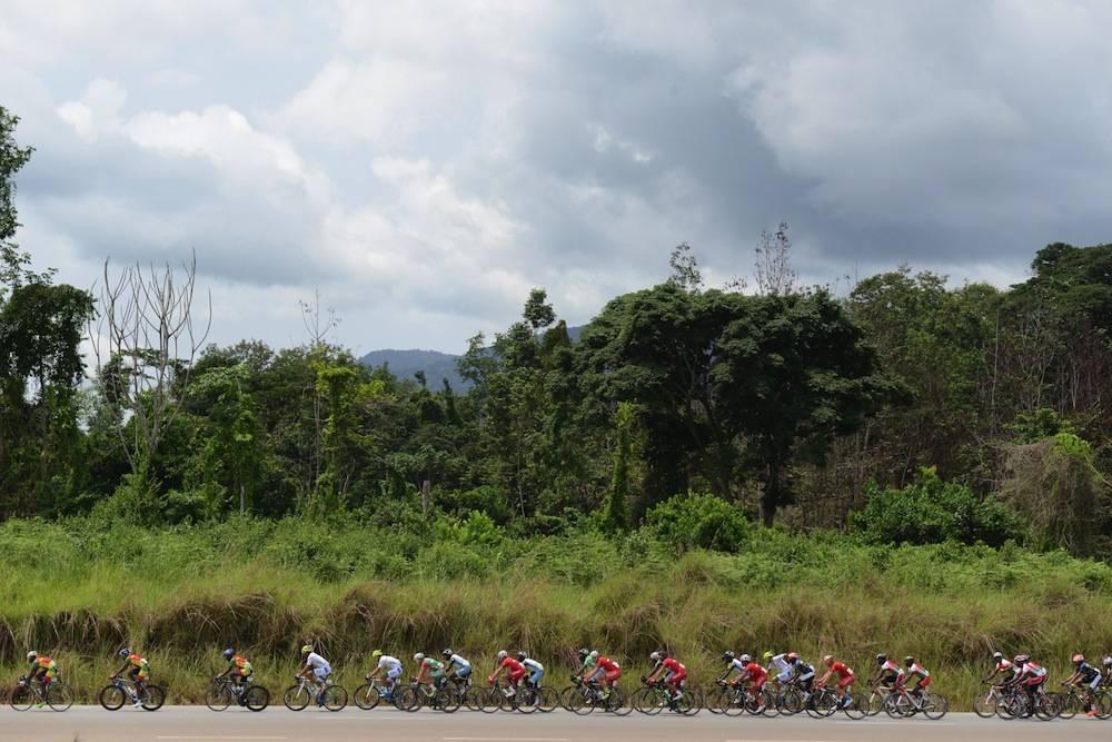 Le peloton de la Tropicale Amissa Bongo traverse la forêt équatoriale gabonaise. ©  Xavier BOURGOIS