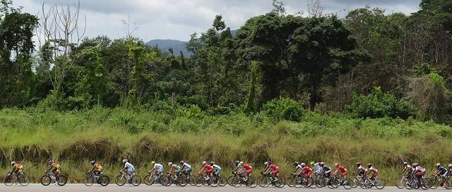 L'Amissa traverse la forêt gabonaise.