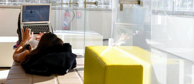 Dasn la bibliothèque de l'incubateur d'entreprises de l'EM Lyon. ©Stephane Audras/REA