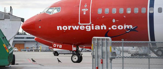 La compagnie aérienne low-cost Norwegian.