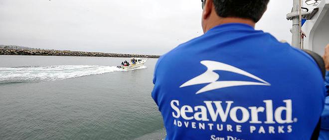 SeaWorld avoue avoir infiltré des associations écologistes.