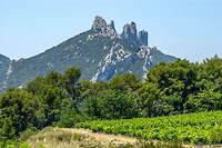 Les Dentelles de Montmirail, cette dorsale calcaire plantée dans les terrasses viticoles du Vaucluse. ©JAUBERT
