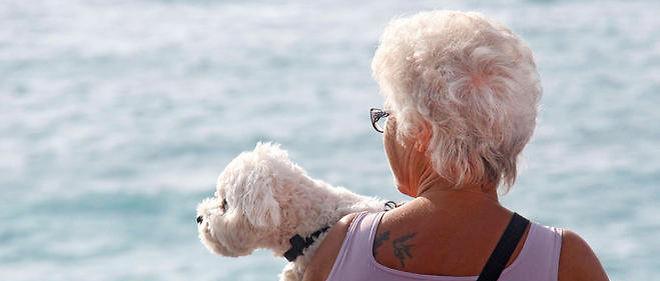 À condition de le promener soi-même, le chien est bon pour le coeur.