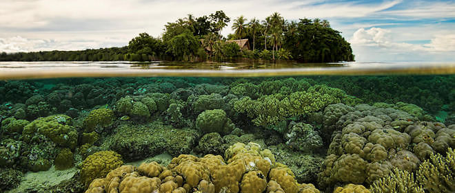 Disparition de certaines îles Salomon