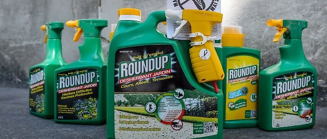 L'autorisation du Roundup en Europe arrive a expiration en juin.