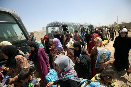Des familles irakiennes près du village d'al-Sejar après avoir fui les combats le 27 mai 2016 à Fallouja © AHMAD AL-RUBAYE AFP