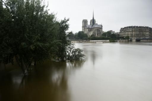 La Seine en crue près de Notre-Dame à Paris le 4 juin 2016 © DOMINIQUE FAGET AFP