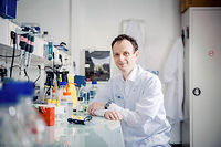 """Expert. L'hépato-gastro-entérologue Gabriel Perlemuter dans son laboratoire de l'hôpital Antoine-Béclère à Clamart. ©Julien Faure pour """"Le Point"""""""