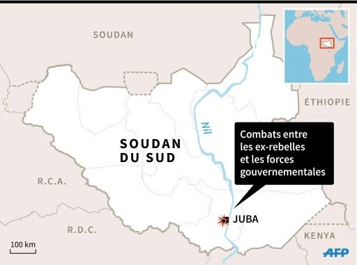 Soudan du Sud © AFP AFP