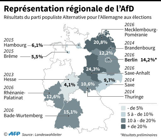 Représentation régionale de l'AfD en Allemagne © Jochen GEBAUER, teb AFP